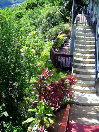 Stairs leading to a house at the mountainside in Honolulu Hawaii