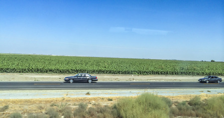 san joaquin valley: Cornfield and highway view from train windows, California central valley one of the world�s most productive farming regions, picture were taken riding the San Joaquin corridor via Amtrack train, California,USA.