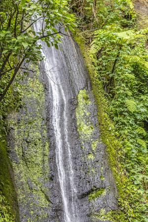 El Brujo Waterfall,,Chocoyero-El Brujo Natural Reserve,Reserva Natural El Chocoyero-El Brujo,ticuantepe,Managua, Nicaragua. photo
