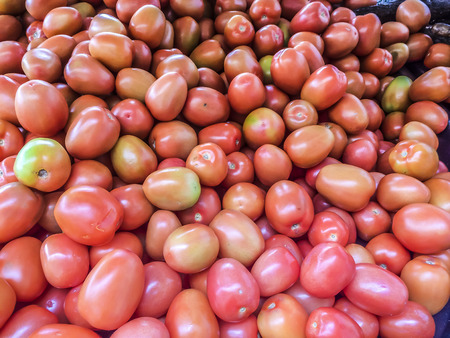 lycopene: Tomatoes by the bunch, produce, food,  vegetable and fruits. Stock Photo