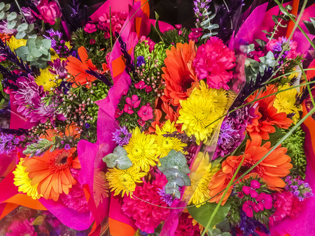 Colors Bouquet flowers, flowers, florist, gift, rainbow olors photo