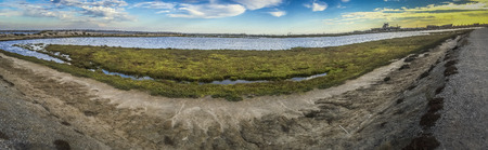 huntington beach: Bolsa Chica ecological reserve,  natural reserve in the city of Huntington Beach, California, United States
