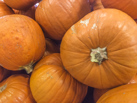 produce: Pumpkin by the bunch, produce, market