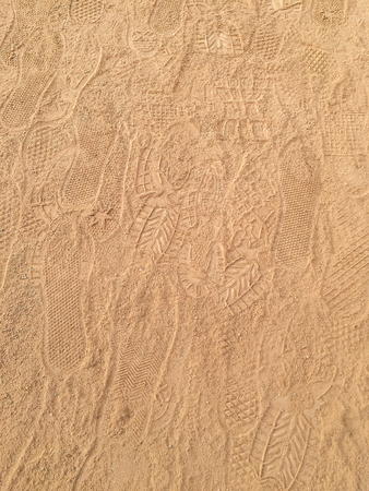 imprinted: Various footprints imprinted on field track. Stock Photo