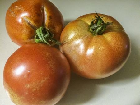 trio: Home grown Tomato trio