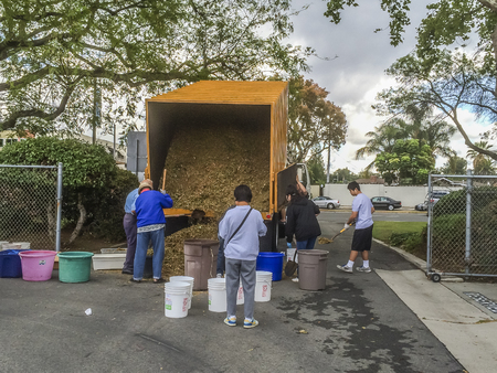 provided: People collecting mulch provided by the city, Westcovina,CA. USA,