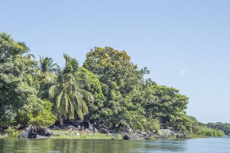 Tropical forest at Granada's Islands, Granada, Nicaragua