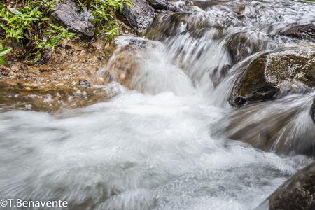 River cascade at the Peñas Blancas Massif natural reserve, Jinotega, Matagalpa,Nicaragua Imagens