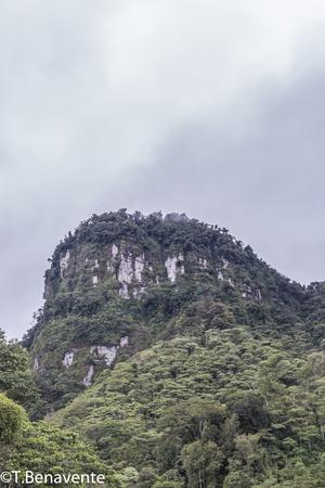 The Morro mountain at the  Peñas Blancas Massif natural reserve, Jinotega, Matagalpa,Nicaragua