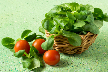 rapunzel: Corn salad (salad Rapunzel, lambs lettuce) in a wicker basket and tomatoes on a green background Stock Photo