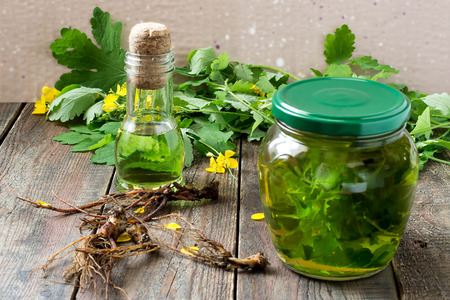 diuretic: Herbal medicine: celandine grass, extract oil and roots on a wooden table. Selective focus Stock Photo