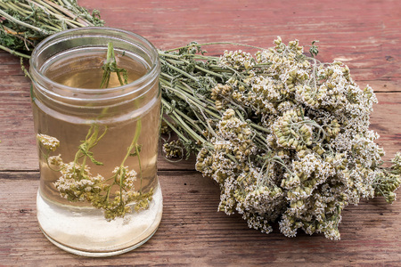 milfoil: Medicinal plant yarrow (dried flowers and decoction) on an old wooden table