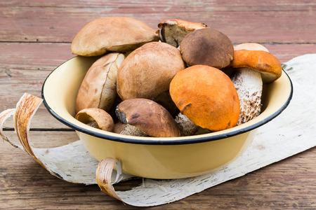 birch bark: Various wild mushrooms in an enamel bowl, on a birch bark. Rustic style. Selective focus Stock Photo