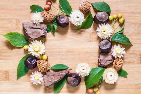 pits: Frame from autumn elements: chestnut, tree bark, dried flowers, Chinese apples, leaves, peach pits on a wooden background Stock Photo