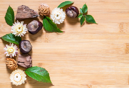Autumn composition in the corner of a rectangular space: pieces of bark, leaves, chestnuts, peach pits, dried flowers on a wooden background