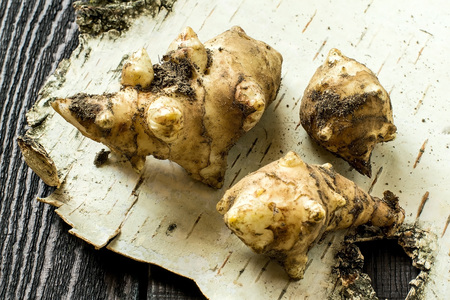 jerusalem artichoke: Fresh organic jerusalem artichoke (Helianthus tuberosus) with soil particles on birch bark. Selective focus Stock Photo