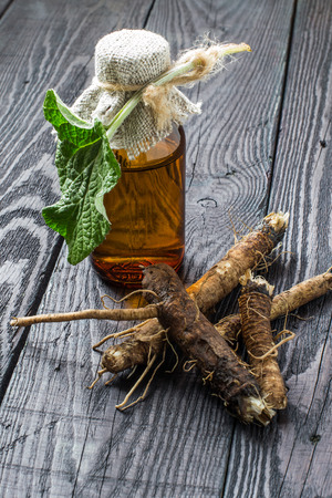 Medicinal plant - a burdock. The roots and leaves of burdock, burdock oil in bottle on a wooden background. It is used for the treatment and care of hair Stock Photo
