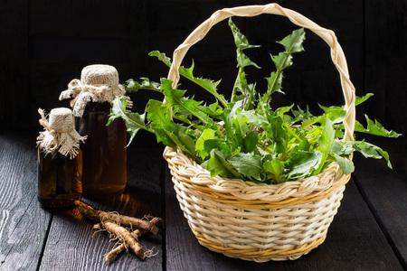Geneeskrachtige plant - paardenbloem. Paardebloembladeren in een mand, een tinctuur en een siroop in farmaceutische flessen, wortels op houten achtergrond. Het wordt gebruikt voor kruidengeneeskunde en gezonde voeding