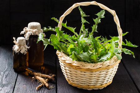 botanical remedy: Medicinal plant - dandelion. Dandelion leaves in a basket, tincture and syrup in pharmaceutical bottles, roots on wooden background. It is used for herbal medicine and healthy food