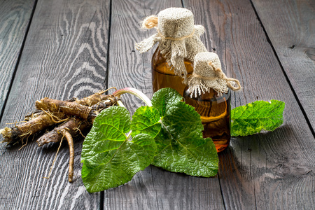 burdock: Medicinal plant - a burdock. The roots and leaves of burdock, burdock oil in bottles on a wooden background. It is used for the treatment and care of hair