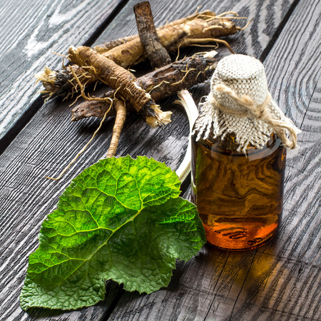 Medicinal plant - a burdock. The roots and leaves of burdock, burdock oil in bottles on a wooden background. It is used for the treatment and care of hair. Selective focus, square image