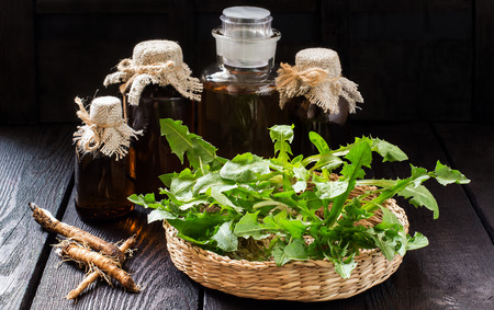 Medicinal plant - dandelion. Dandelion leaves in a basket, tincture and syrup in pharmaceutical bottles, roots on wooden background. It is used for herbal medicine and healthy food