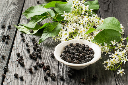 diuretic: Medicinal plant - bird cherry (Prunus padus). Flowering branches and dried berries on a white wooden background. Selective focus
