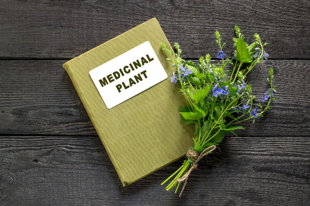 expectorant: Medicinal plant Veronica Chamaedrys and herbalist handbook on the old wooden table