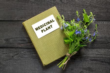 herbolaria: planta medicinal Veronica Chamaedrys y el manual de herbolario en la mesa de madera vieja