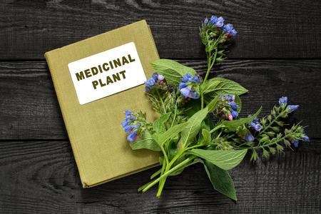herbolaria: consuelda planta medicinal (Symphytum officinale) y el manual de herbolario. Se utiliza para aplicaciones al aire libre, promueve huesos de empalme. Atención, hay contraindicaciones