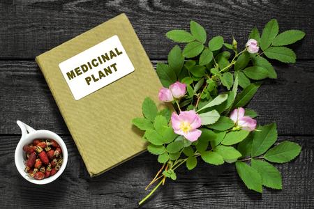 herbolaria: Rama de florecimiento rosa mosqueta, se seca madera de brezo y el manual de herbolario. Se utiliza en la medicina natural, la nutrición, la horticultura
