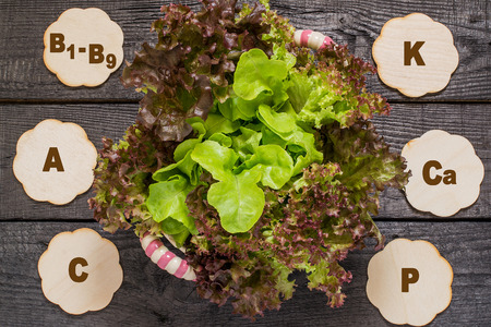 group b: Fresh crispy lettuce and Lollo Rossa. Source of vitamins A, C, group B, rich in potassium, calcium, phosphorus, magnesium. Used in dietary, health and vegetarian nutrition, detox Stock Photo