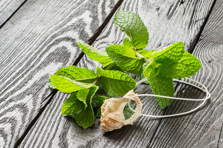 phytotherapy: Medicinal plant: mint (Mentha spicata). Mint essential oil in aromatic pendant, fresh mint on a dark wooden table. Used in aromatherapy, phytotherapy, SPA, healthy and vegetarian food Stock Photo