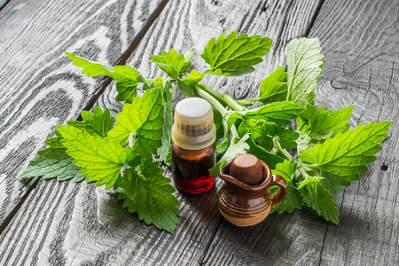 melissa: Essential oil melissa officinalis in a small brown bottle and small clay jar, fresh melissa on a dark wooden table Stock Photo