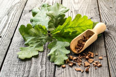 薬用植物 (コナラ) 樫の木です。分岐は、暗い木製のテーブルのスクープでオークの樹皮。漢方薬の吠え声、葉およびドングリを使用しました。ドン