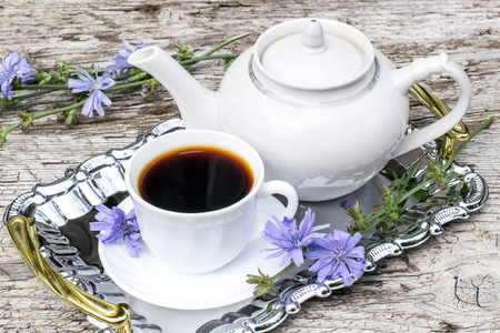 inulin: Medicinal plant chicory. The roots of the plants are used as a substitute for coffee. Drink from chicory in a cup and teapot on a metal tray on the old wooden background