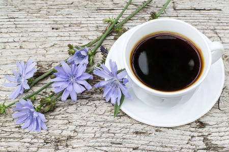acuminate: Medicinal plant chicory. The roots of the plants are used as a substitute for coffee. Drink from chicory in a cup on the old wooden background