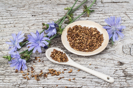 inulin: Medicinal plant chicory: flowers and ground roots on a plate and spoon on the old wooden background. The roots of the plants are used as a substitute for coffee Stock Photo