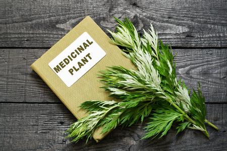 herbolaria: ajenjo planta medicinal (Artemisia absinthium) y el manual de herbolario en una mesa de madera oscura Foto de archivo