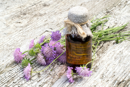 pharmaceutical bottle: Medicinal plant Knautia arvensis, commonly known as field scabious and brown pharmaceutical bottle on old wooden table. Used in herbal medicine, is a major source of nectar. Selective focus Stock Photo