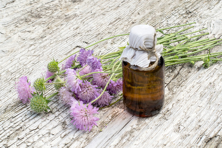 Medicinal plant Knautia arvensis, commonly known as field scabious and brown pharmaceutical bottle on old wooden table. Used in herbal medicine, is a major source of nectar. Selective focus Stock Photo