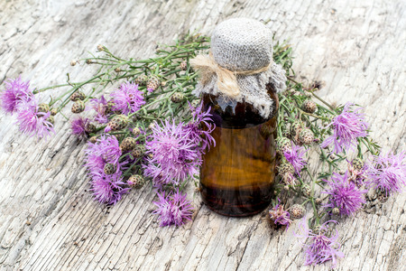 pharmaceutical bottle: Medicinal plant Centaurea jacea (brown knapweed or brownray knapweed) and pharmaceutical bottle on old table. Used in herbal medicine as well as a good honey plant