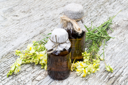 expectorant: Linaria vulgaris (common toadflax, yellow toadflax, or butter-and-eggs) and pharmaceutical bottles on old wooden table. In herbal medicine is used in the form of tinctures and ointments