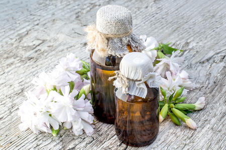 antirheumatic: Medicinal plant Saponaria officinalis (common soapwort, bouncing-bet, crow soap, wild sweet William, soapweed) and pharmaceutical bottle. Used in herbal medicine, food and chemical industry Stock Photo