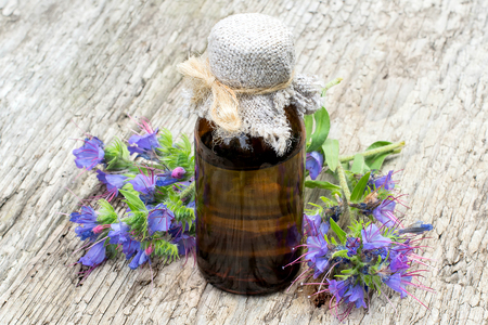 Medicinal plant Echium vulgare (viper's bugloss and blueweed) and pharmaceutical bottle on old wooden table. It is used in herbal medicine, good honey plant