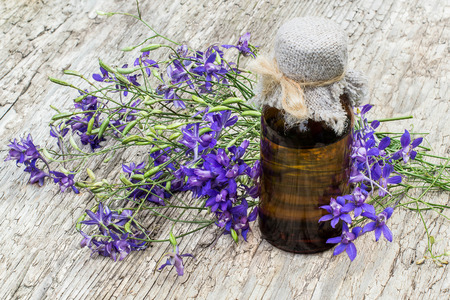 pharmaceutical bottle: Medicinal plant Consolida regalis (Forking Larkspur, Rocket-larkspur, Field larkspur) and pharmaceutical bottle on old wooden table. It is used in herbal medicine, good honey plant