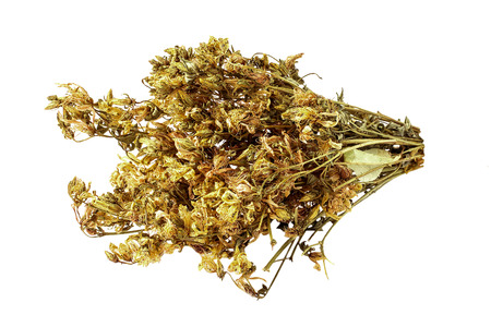 Bundle of dried flowers Saint-Johns-wort (Hypericum) isolated on white background. It is used for the preparation of useful herbal tea and medicinal infusions in the herbal medicine