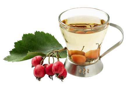 Useful fruit tea with hawthorn (Crataegus) isolated on white background. Used in healthy nutrition and herbal medicine Stock Photo