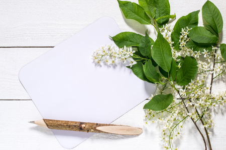 Flowering bird cherry branch with a card for the text on a white wooden background. Can be used as floral backgrounds, holiday greetings and invitations postcards