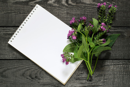 enveloping: Medicinal plant comfrey (Symphytum officinale) and notebook to write recipes and methods of application. Used for outdoor applications, promotes splicing bones. Caution, there are contraindications Stock Photo